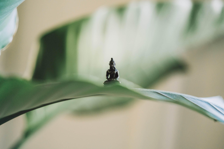 zen massage zen mobile massage