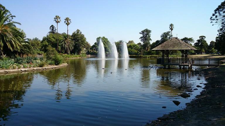 Massage Moonee Ponds